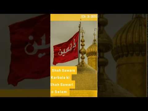 ❤️Shah Saware Karbala ki Shah Sawari ko Salam WhatsApp status/ ya Hussain.