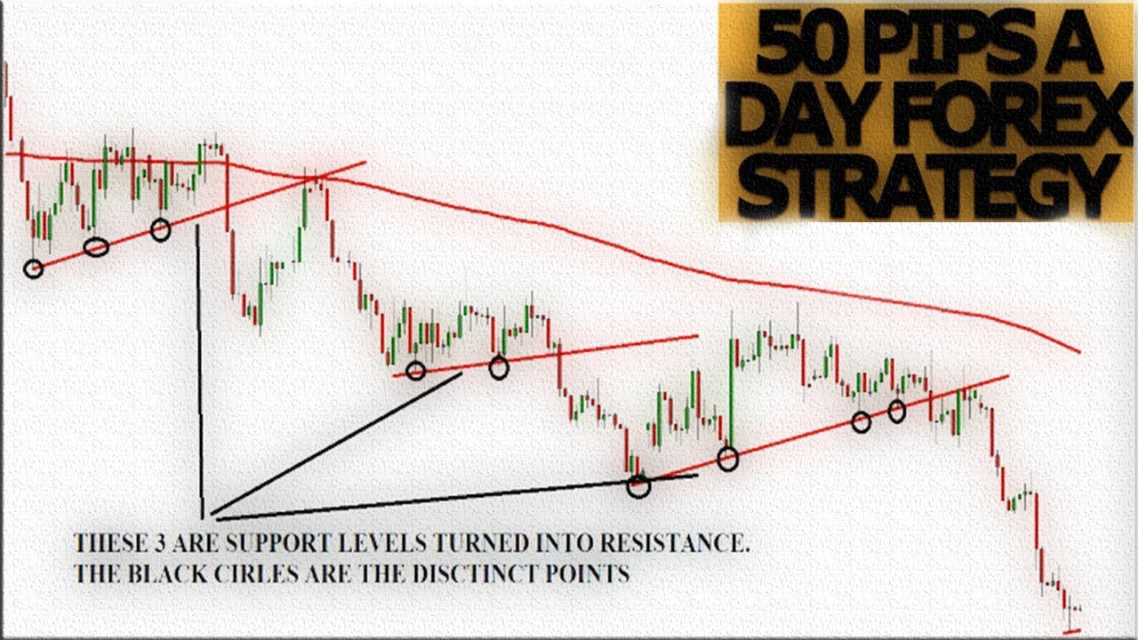20 Pips Per Day Indicator Strategy Explained: SMA + Momentum