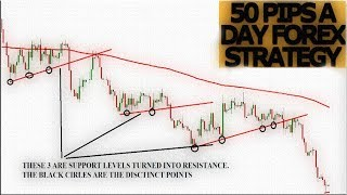 50 PIPS a day. Profitable FOREX strategy   Forex Strategies for beginners