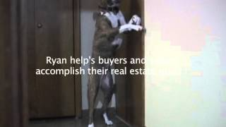My Dog Wants A New Home - Ryan Harlan  - Fathom Realty- charlotte247realestate.com