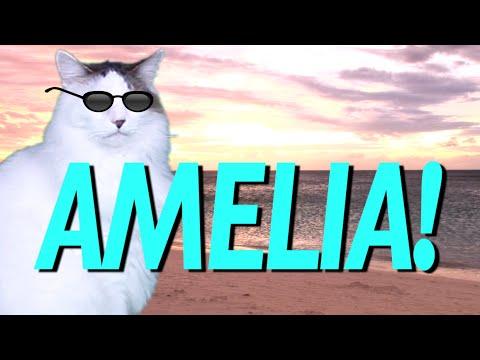 HAPPY BIRTHDAY AMELIA! - EPIC CAT Happy Birthday Song