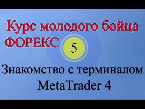 Metatrader 4 обучение -