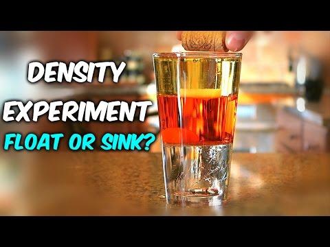 Density Experiment Float or Sink