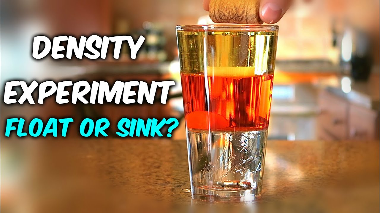 Density Experiment Float Or Sink Youtube