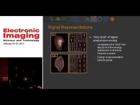 Problems in Biological Imaging: Opportunities for Signal Processing