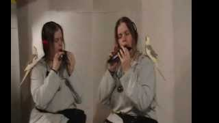 Gelfling song duet from The Dark Crystal ♦ Anything on Ocarina
