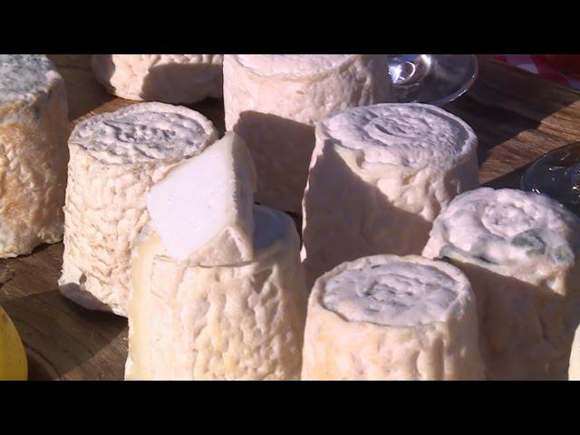 Terroir : tout sur le chabichou du Poitou !