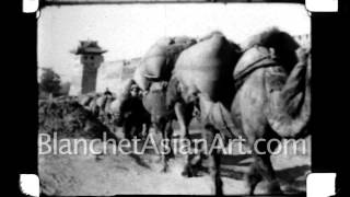 1920's Film of China: camel caravan with amazing view of city wall.