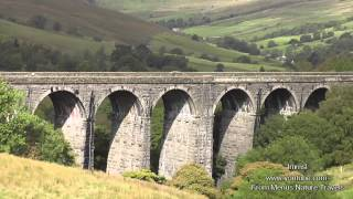 Ribblehead Viaduct & Dent On The Settle -Carlisle Railway-  Highest mainline station in England