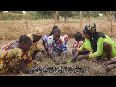 Video: TAMAssociati Designs for Sustainability & Water Recycling in Senegal