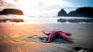 Relaxing Beach Music | Spanish Summer | Instrumental, Romantic, Ambient