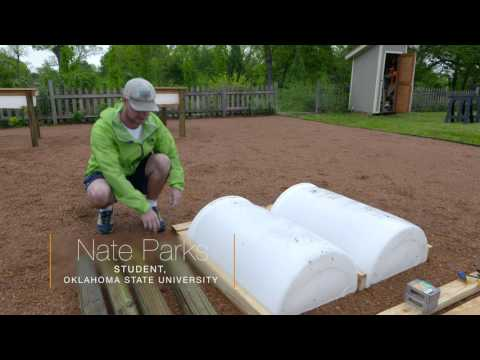 DIY Elevated Planters