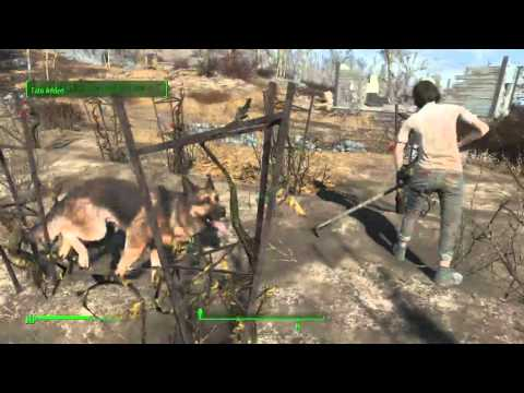 How to find food for sanctuary quest Fallout 4