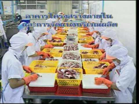 วีดีโอ GMP โรงงานอาหาร