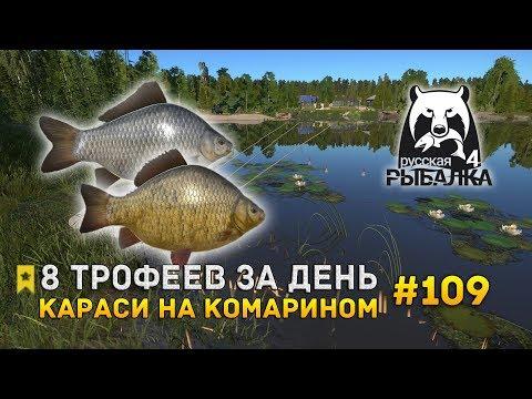 Русская Рыбалка 4 #109 - 8 Трофеев за день. Караси на Комарином