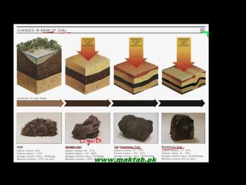 FSc Chemistry Book2, CH 7, LEC 4: Coal Sources of Organic Compounds (Part 1)