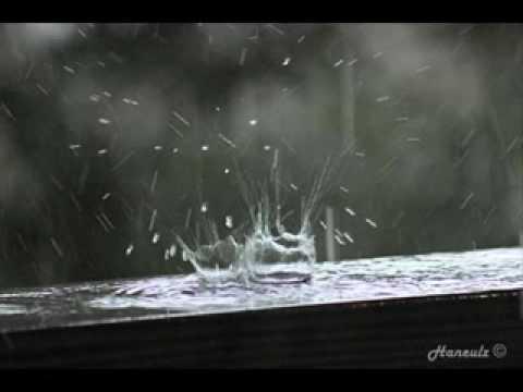 Hạt mưa cuối cùng...