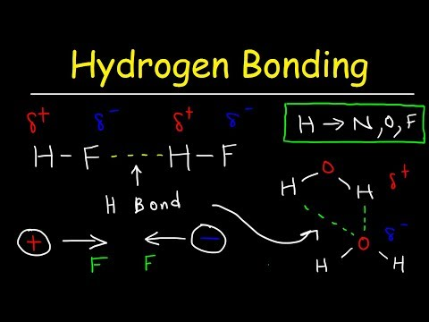 Hydrogen Bonds In Water Explained - Intermolecular Forces