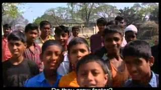 Grameen Danone Food Project