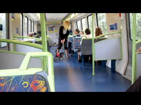 D.A.D. Training Kari on Train lo res.mpg Travel Video