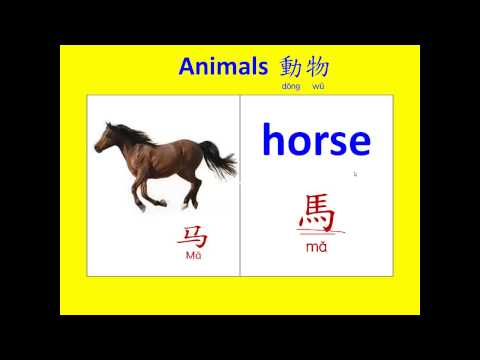 abc英語 動物中英文名稱1 (Learning English and Chinese about animals.)