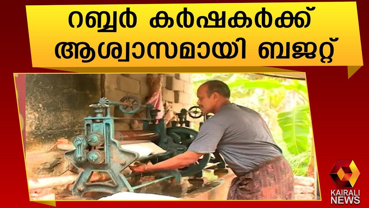 റബ്ബറിന്റെ താങ്ങുവില വർദ്ധന മലയോര കർഷകർക്ക് ആശ്വാസം|Kerala Budget | Thomas Issac | Rubber Farming