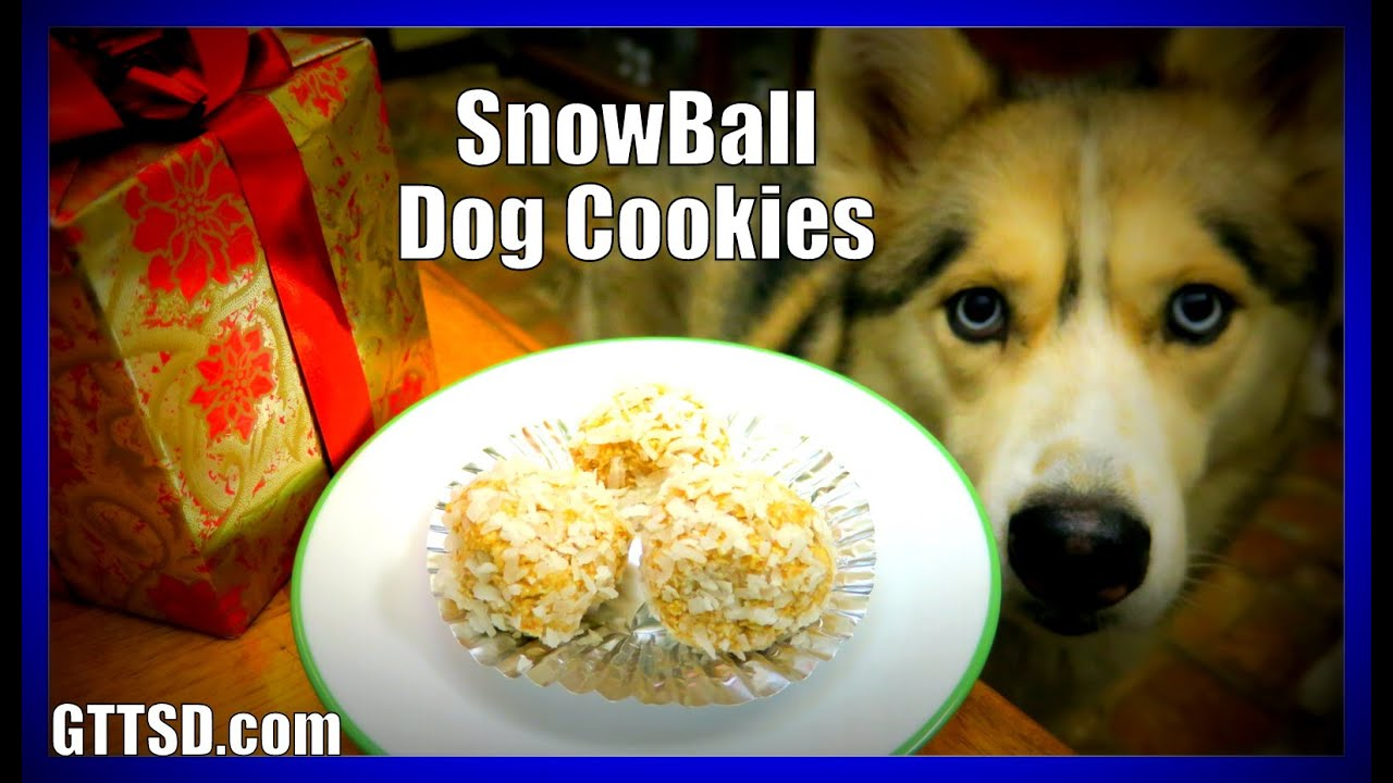 Diy Snowball Dog Cookies Snow Dogs Snacks 40 No Bake Dog Treats
