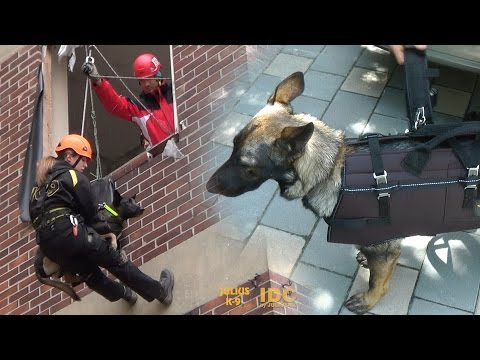 The Repelling & carrying harness of JULIUS-K9®  Code: 16600-L