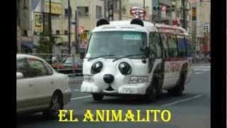 EL ANIMALITO - ALEXANDRIN