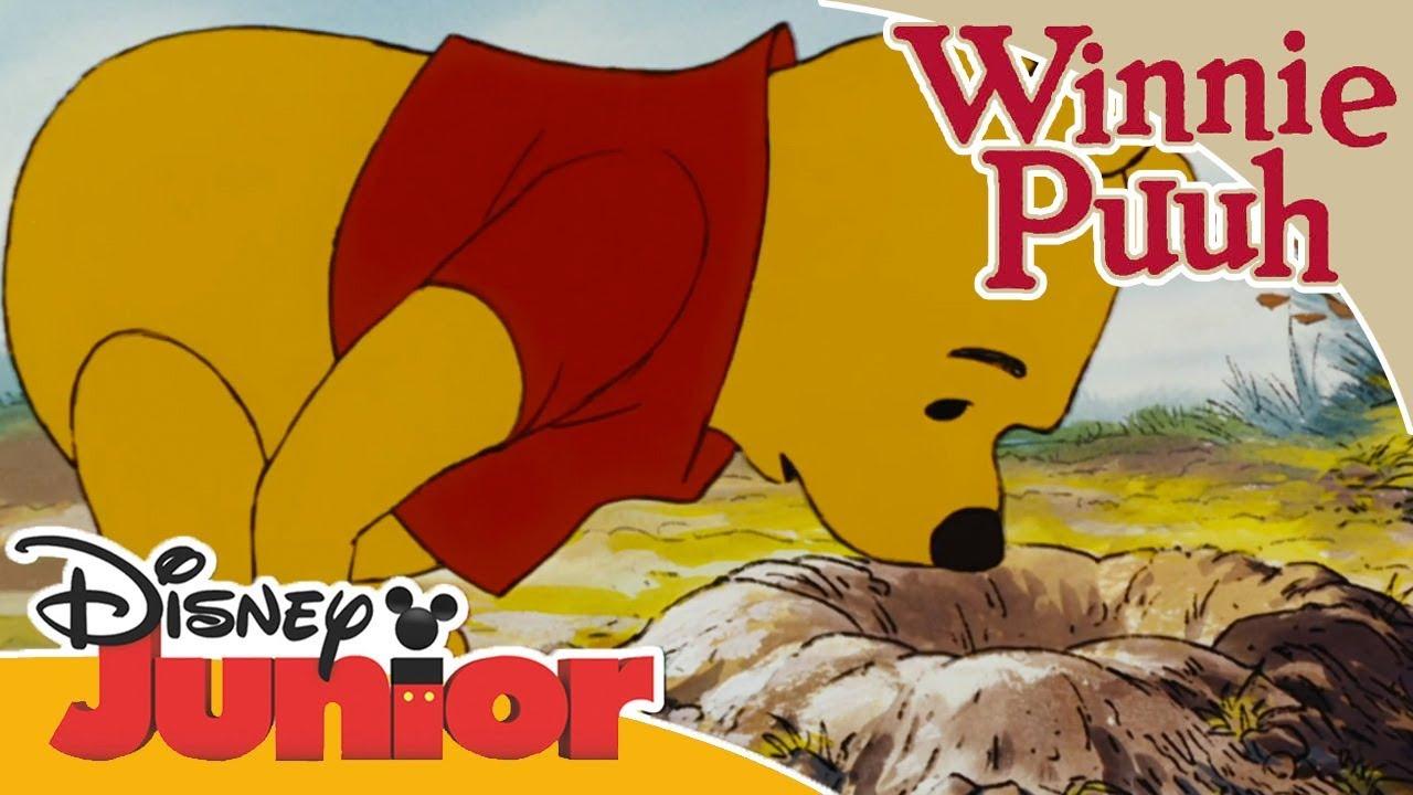 Kleine Abenteuer mit Winnie Puuh  Winnie Puuh und Gropher  YouTube