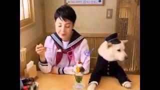 [爆笑廣告] SoftBank 白戶家廣告特輯