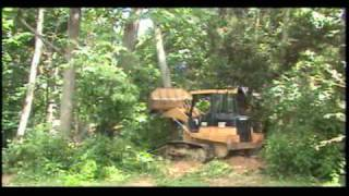 Tree felling with a CAT