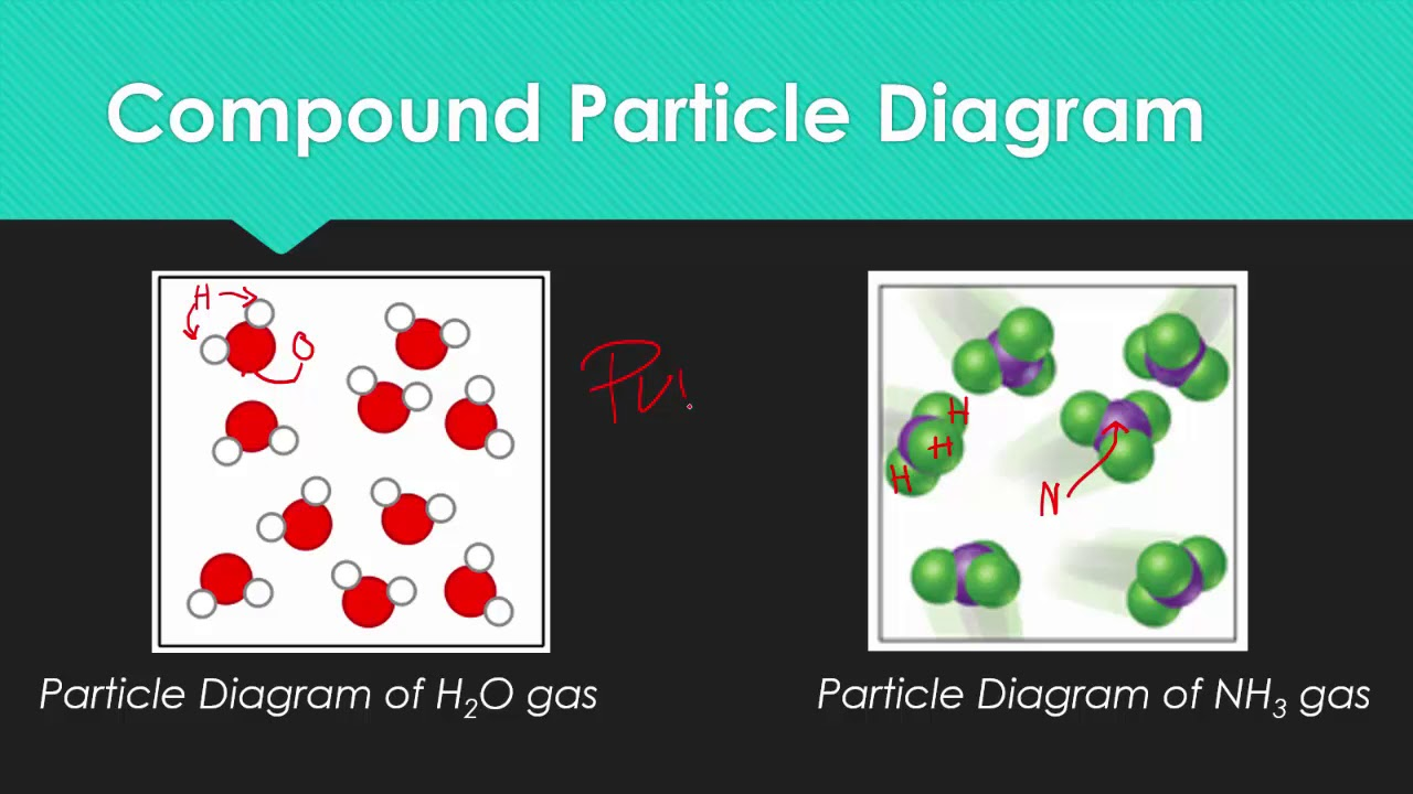 Liquid Particle Diagram