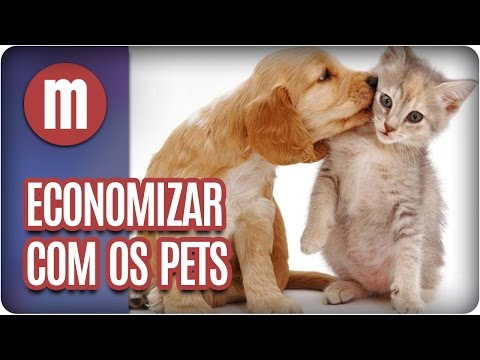 Dicas para economizar com os pets - Mulheres (20/04/17)