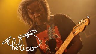 DAMILY - Halandongo (live à la Maroquinerie)