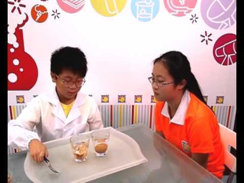 Graceful Hands Super Scientist Experiment Isaac Bouncy Egg