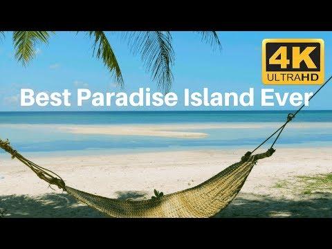 Best Paradise Beach Scene with Hammock in 4K relaxation