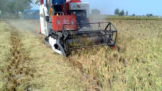 rice combine harvester in iran