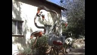 Йоав Йегуда - земля, текущая вином и...пивом! Экскурсия по Израилю(, 2014-08-03T13:25:35.000Z)
