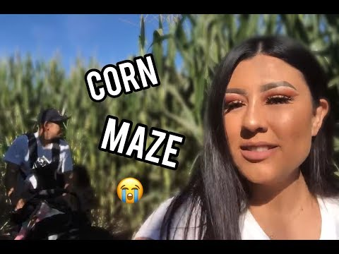 PUMPKIN PATCH AND CORN MAZE