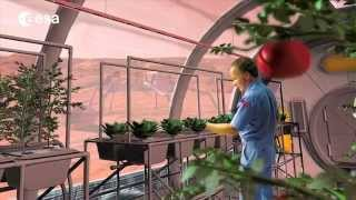 Growing Plants in Outer Space | ESA Science HD Video