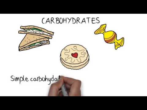 Biology - Diet: Science Exam Tips