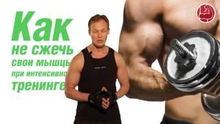 Как не сжечь свои мышцы при интенсивном тренинге?(, 2013-08-13T09:36:52.000Z)