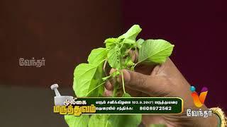 விதை வீக்கம் நோயை குணப்படுத்தும் மருத்துவம்..! Mooligai Maruthuvam [Epi 53 - Part 2]