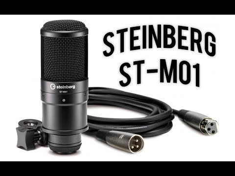 Steinberg ST-M01 Condenser Microphone Demo Review - Budget Podcasting and Voice Over
