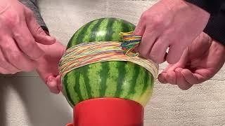 Watermelon vs rubber bands