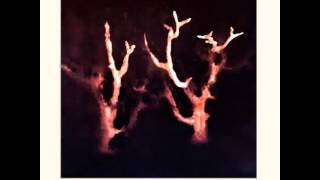 Sol Invictus - See The Dove Fall [early demo, 1999 mix] thumbnail