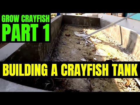 Crayfish Tank Construction   Grow Crayfish For Food #1