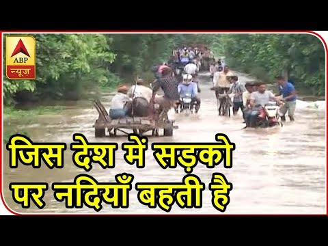 People Use Bullock-Carts As Mode Of Transportation In Flood-Hit Moradabad   ABP News