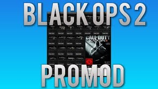black ops 2 how to get mods